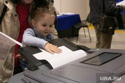 Выборы губернатора и в городскую думу. Тюмень, выборы, коиб, избиратели, избиратель