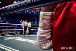 Турнир по боксу и ММА в ДИВСе. Екатеринбург, бокс, боксерская перчатка