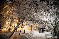 Виды Салехарда, мороз, город салехард, зима, городской сад, иней, снег, парк