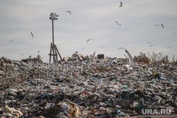 Проверка ОНФ и Общественной палатой Тюменской области полигона твердых бытовых отходов на Велижанском тракте. Тюмень, экология, отходы, полигон тбо, мусор, свалка
