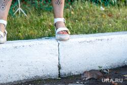 Закрытие фестиваля венских музыкальных фильмов, татуировка, мышь, босоножки