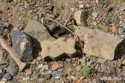 Тело мужчины на отмели Городского пруда в начале улицы Первомайская. Екатеринбург, кровь на камнях