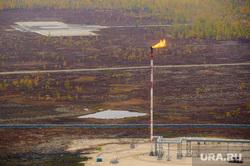 Природа Ямало-Ненецкого автономного округа, трубопровод, экология, осень, факел, природа ямала, сопутствующий газ