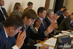 Заседание комитета по социальной ьюджету и финансам. Тюмень, поднятые руки, голосование