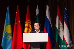 X Международный IT-Форум c участием стран БРИКС и ШОС. Ханты-Мансийск, флаги государств, комарова наталья
