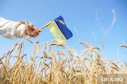 Флаг Украины, борьба, кулак, прослушка , поле, флаг украины, украинский патриот