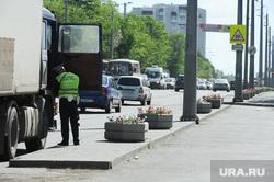 Городские клумбы. Челябинск, гаи, полиция, клумба с цветами, гибдд, дпс, проверка на дорогах