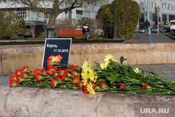 Цветы на площади Труда. Екатеринбург, керчь, хризантемы, цветы
