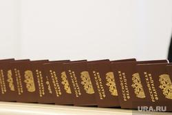 Торжественное вручение паспортов Александром Моором, вручение государственных наград. Тюмень, паспорт гражданина рф