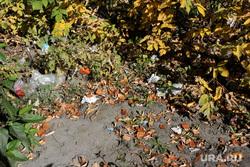 Курган, осень, мусор в кустах