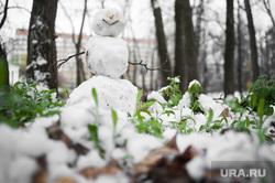 Виды Екатеринбурга, снеговик, растение, снег