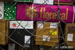 Прибытие рейса из Амстердама в Кольцово с цветами на борту. Екатеринбург, багаж, коробки, груз, санкции