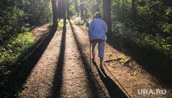 Экологическая тропа, тропа пенсионеров в парке Гагарина. Челябинск, парк, скандинавская ходьба, экологическая тропа, тропа пенсионеров, лес, городской бор