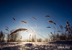 Зимняя природа в окрестностях Сургута., зима, природа, пейзаж