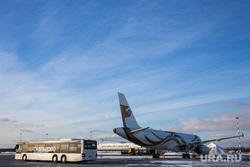 Прибытие рейса из Амстердама в Кольцово с цветами на борту. Екатеринбург, кольцово, автобус, самолет