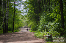 Шарташский лесопарк. Каменные палатки. Екатеринбург, прогулка по лесу, лесопарк шарташский