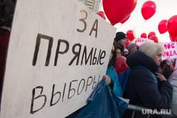 Митинг за сохранение прямых выборов мэра Екатеринбурга, акция протеста, митинг, плакат, прямые выборы