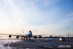 Прибытие рейса из Амстердама в Кольцово с цветами на борту. Екатеринбург, кольцово, самолет
