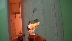 Разгром поликлиники в Далматово. Курганская область, сломанная дверь
