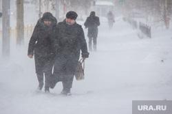 Снег в городе. Нижневартовск., метель, снег, зима