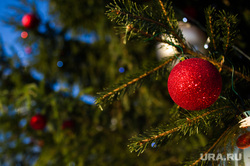 Виды Екатеринбурга, елка, новогодний шар