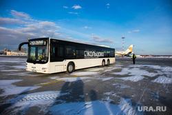 Прибытие рейса из Амстердама в Кольцово с цветами на борту. Екатеринбург, кольцово, автобус