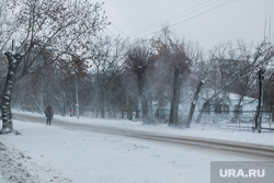 В городе снег и ветер. Курган, ветер, метель, пурга