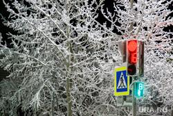 Виды Салехарда, светофор, пешеходный переход, мороз, зима, иней, снег