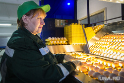 Пасхальная экскурсия на хлебокомбинат и птицефабрику «СИТНО». Магнитогорск, продукты, яйца, птицефабрика, проверка качества, еда