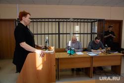 Очередное судебное заседание по делу экс-спикера городской думы Дмитрия Еремеева. Тюмень , нурканова марина