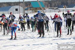 Лыжня России Курган, забег, лыжники