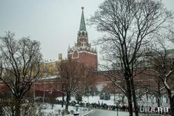 Новогодняя елка в Кремле. Москва, город москва, очередь, кремль, троицкая башня кремля, александровский сад