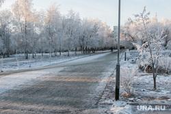Разное. Курган, снег, зима, городской сад, природа, иней на деревьях