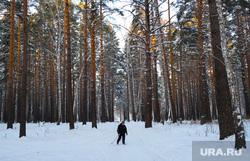 Дети катаются с горки на площади Ленина. Курган, зима, лыжник с палками, лес