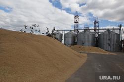 Фермерские хозяйства. г. Шадринск, элеватор, зерно