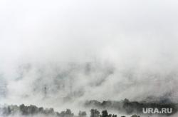 Клипарт. Ноябрь. Магнитогорск, туман, вода, экология, деревья, лес, природа, смог