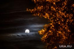 Лунное затмение. Екатеринбург, луна, ночь, лунное затмение