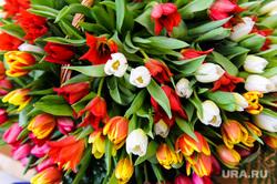 Рабочий визит Бориса Дубровского в Чебаркульский район. Челябинская область, тюльпаны, букет, цветы