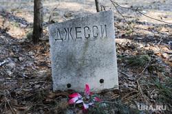 Стихийное кладбище домашних животных в парке им. Гагарина. Челябинск, кладбище домашних животных, джесси