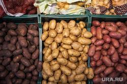 Открытие супермаркета «Перекресток». Екатеринбург, овощи, продуктовый магазин, картофель, картошка, прилавок