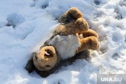 Рабочая поездка врио губернатора Алексея Текслера в Коркино и Полетаево. Челябинская область, мягкая игрушка, снег