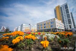 Пресс-тур в Академический. Екатеринбург, академический район, солнечная погода, клумба с цветами