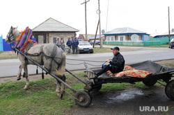 Клипарт. Челябинск, лошадь, телега