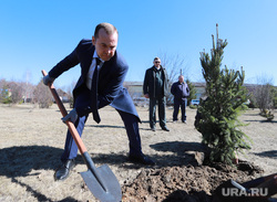 Визит врио губернатора Шумкова Вадима в Шатровский район., лопата, шумков вадим, высадка дерева
