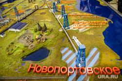Встреча с Александром Мажаровым в здании правительства ЯНАО. Салехард, макет, природные ресурсы, добыча газа, газовые месторождения, новопортовское месторождение