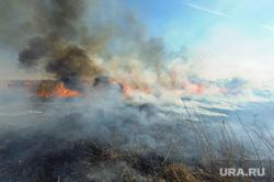 Учения МЧС по тушению лесных пожаров и сельскохозяйственных палов. Челябинск, дым, пожар, пожар в поле, горит трава, огонь