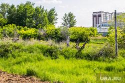 План реконструкции городских объектов, вызвавший резонанс у горожан. Курган, молодежный парк, запустение