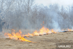 Лесные пожары. Учения МЧС. Челябинск, трава горит, лесной пожар