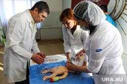 Тренинг врачей первичной реанимационной помощи новорожденным. Копейск, Челябинская область, симулятор, больница, реанимация, роддом, новорожденный, ребенок, медицина, крашенинников сергей