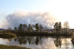 Лесные пожары. Курган, пожар, тбо, отходы, твердые коммунальные отходы, шуховский полигон